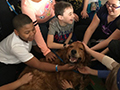 'Paws of Love' & Disco Bowling at Holmes Elementary